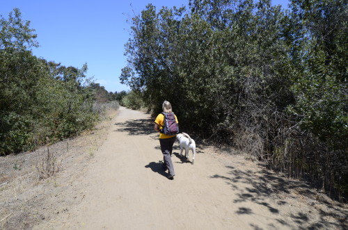 Jan Duquette guides walkers and hikers along the trails of southern Orange County. Courtesy photo