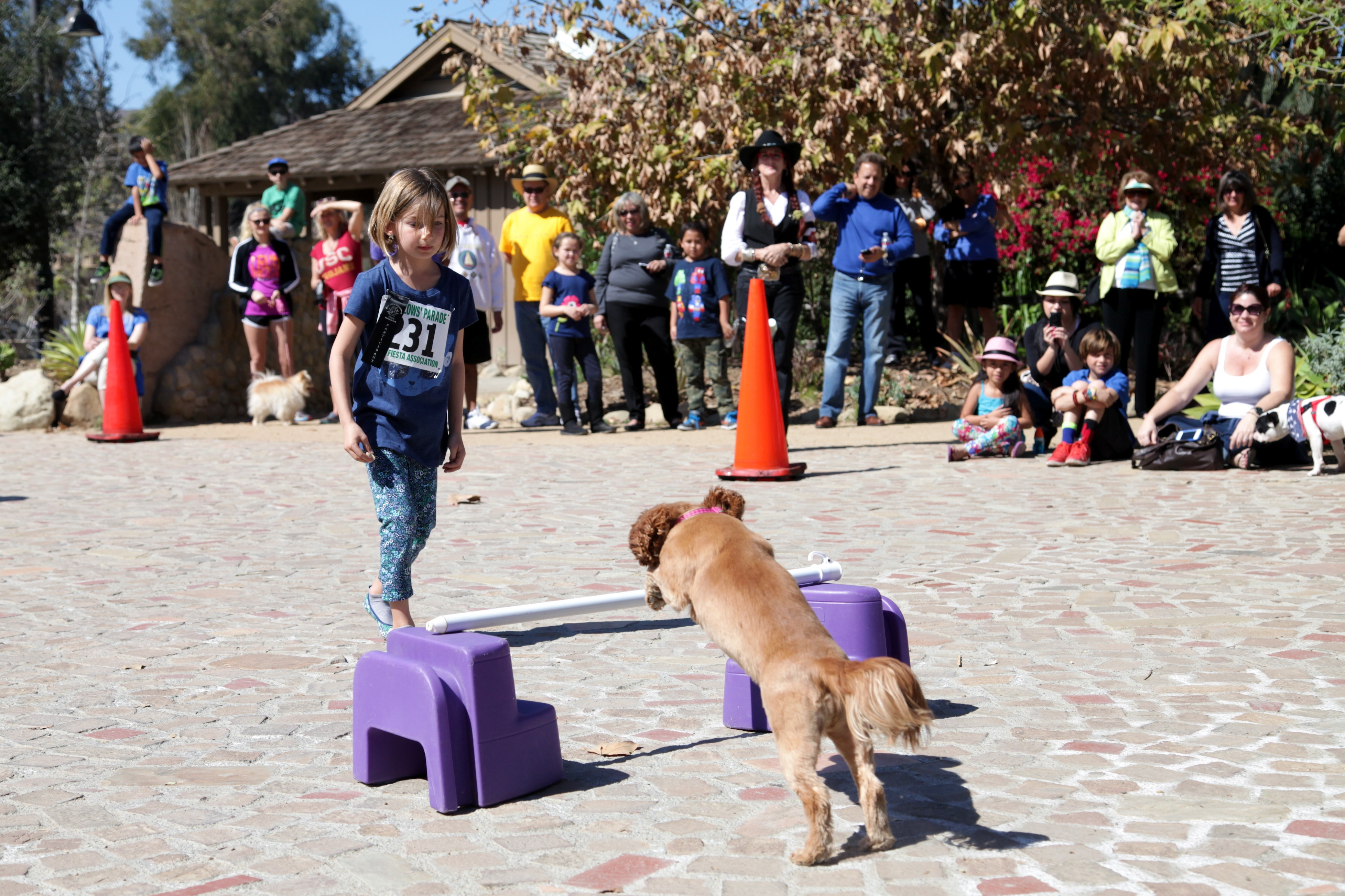 Ava Rowan watches as her dog, Sophie, performs a trick for the crowd. Photo by Brian Park