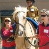 The J.F. Shea Therapeutic Riding Center in San Juan Capistrano invited over 150 family members of U.S. Marines stationed at Camp Pendleton to take part in a variety of horse-related therapy programs. Courtesy photo