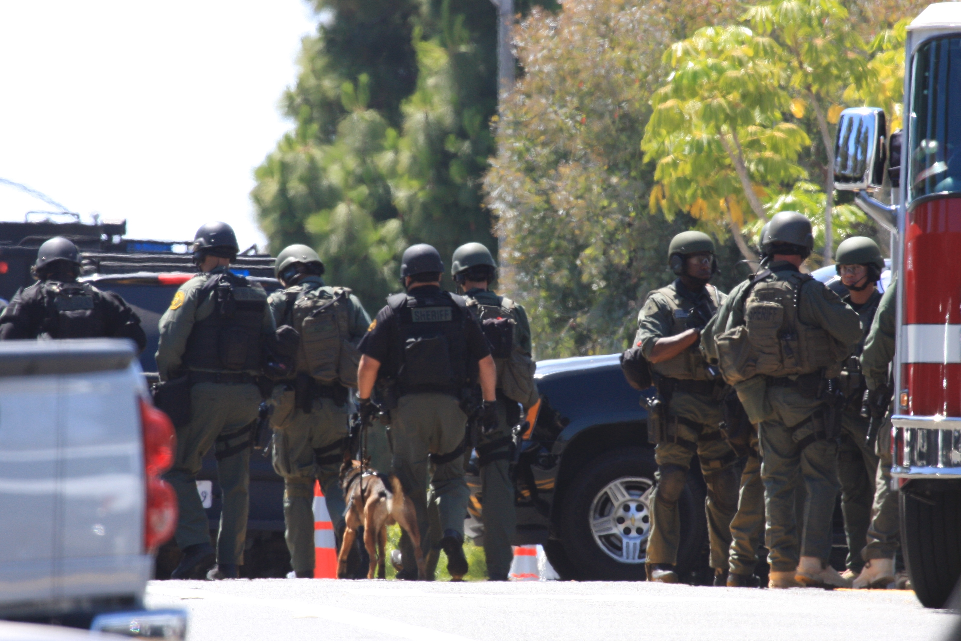 Special Weapons and Tactics (SWAT) and Critical Incident Response Team (CIRT) members head into Dana Hills High School at 3 p.m. Thursday to perform a systematic campus search after the discovery of a gun case prompted a lockdown. Photo: Andrea Swayne