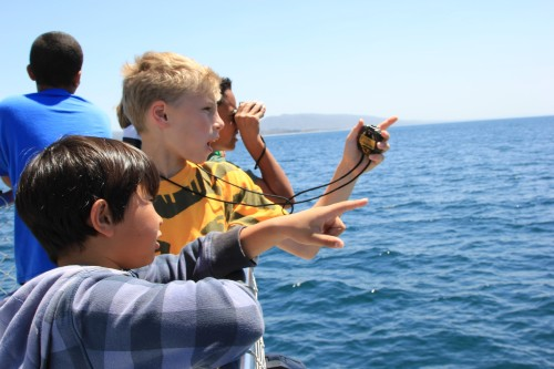 Wood Canyon Elementary School students try to spot gray whales. Photo by Brian Park