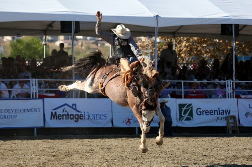 A rodeo cowboy performs during the bareback riding contest. Photo: Alan Gibby/Zone57 Media