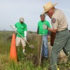 Last year's Earth Day Restoration and Cleanup at Crystal Cove State Park. Photo: Courtesy of California State Parks Foundation