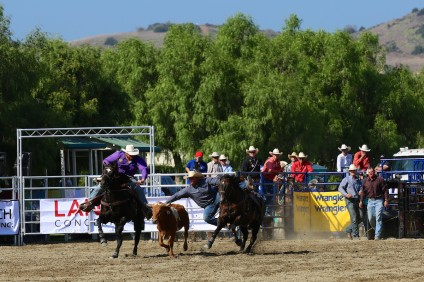 The 2015 RMV Rodeo. Photo: Alan Gibby/Zone57 Media