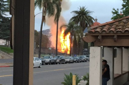 Two cypress trees caught fire Tuesday night. Photo: Courtesy of Sergio Farias