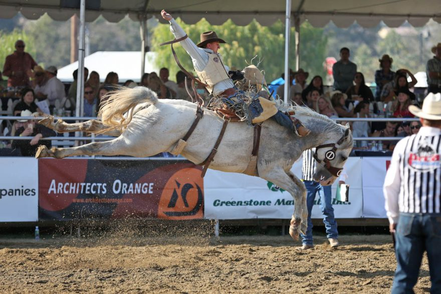 MVrodeo2016-8754