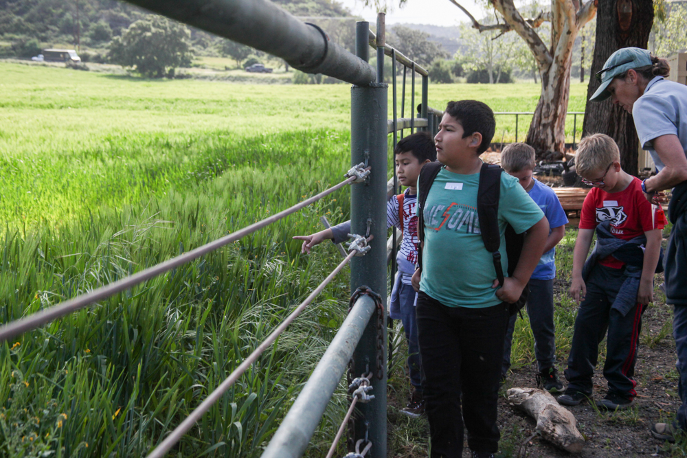 During some down time, Ambuehl Elementary students gaze across a field at The Reserve.