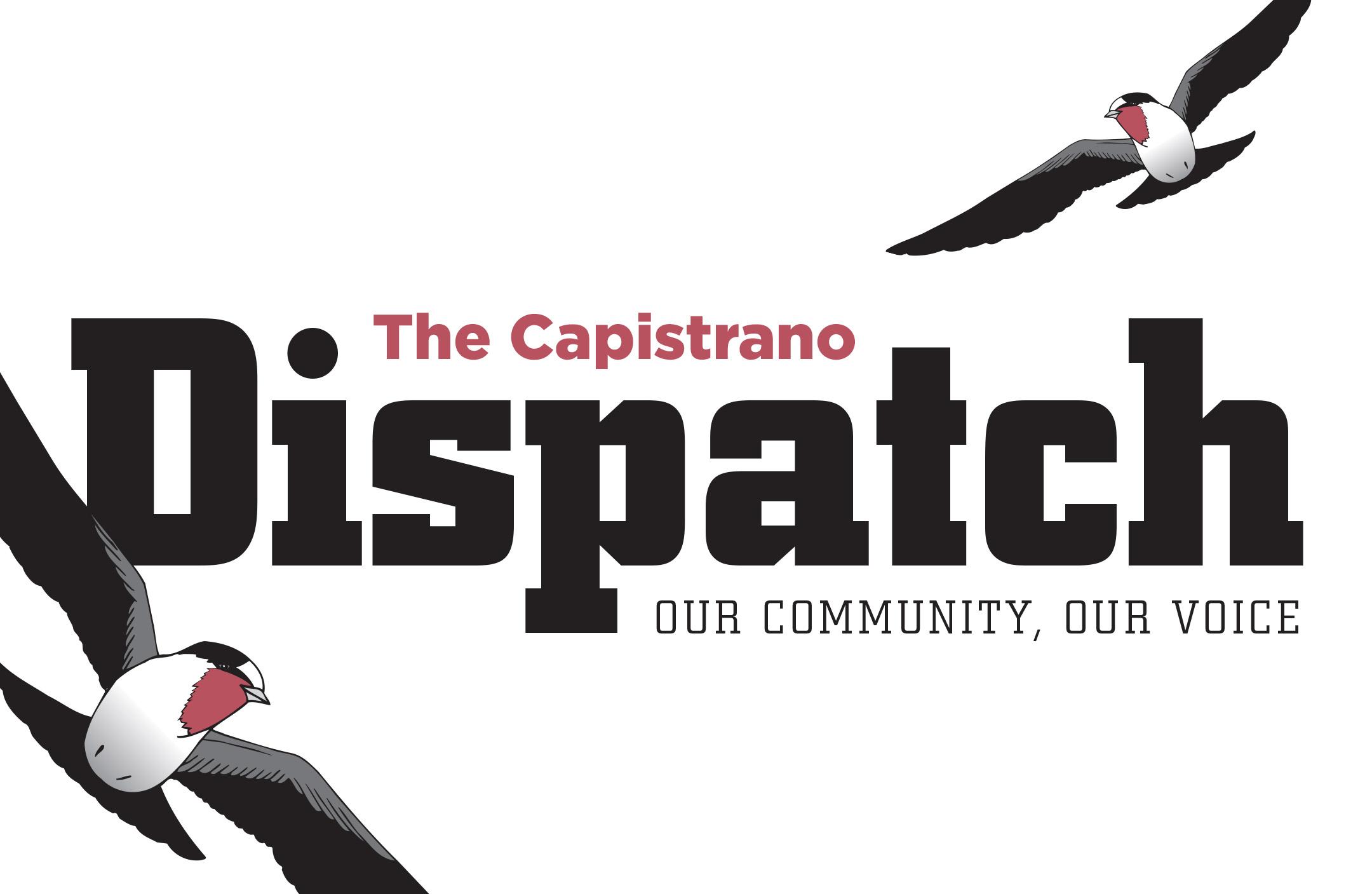 Wide Dispatch Logo