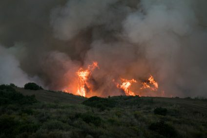 Camp Pendleton wildfire on Thursday, June 29, 2017. Photo: Alan Gibby
