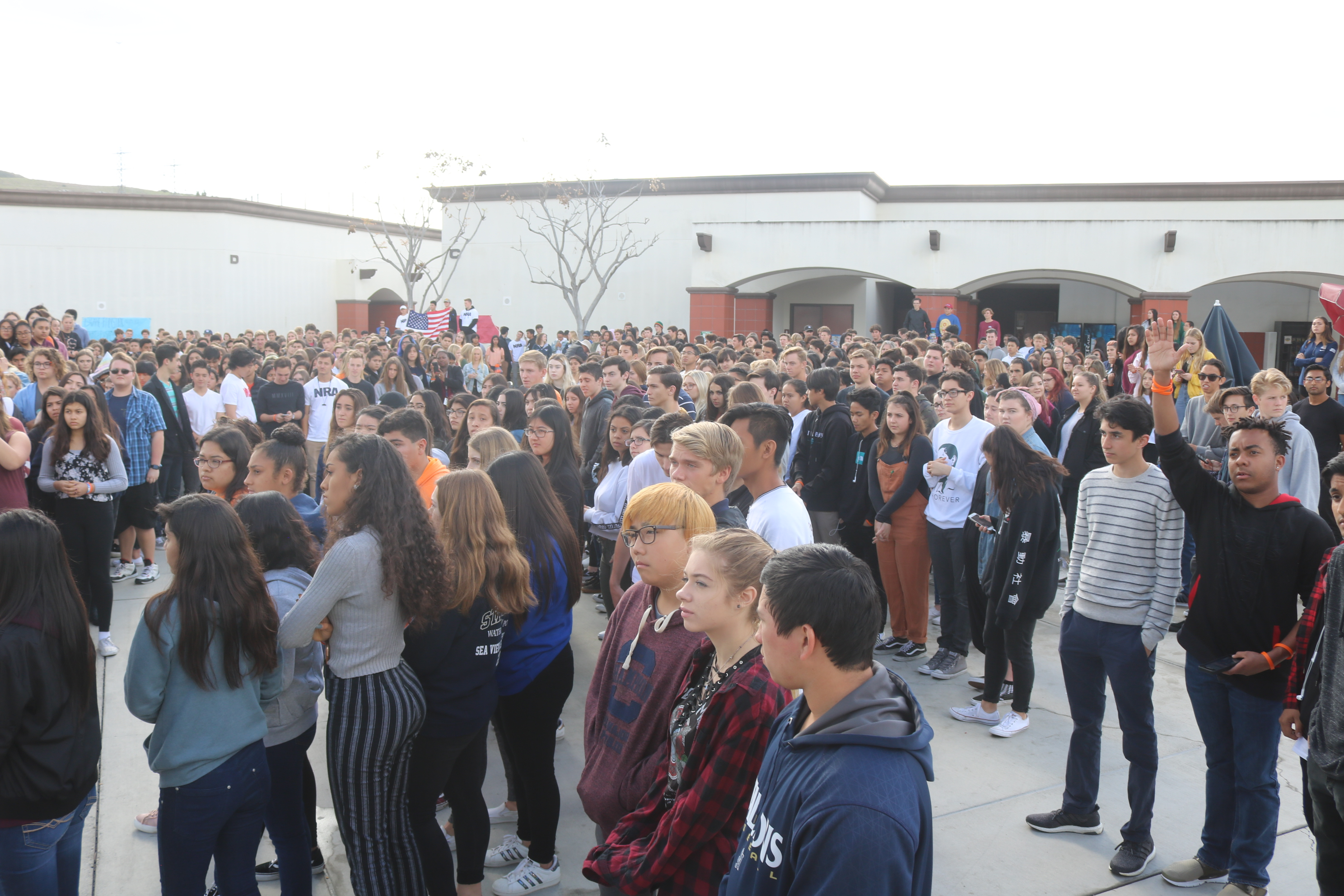 Nearly half of the students at SJHHS participated in the demonstration.