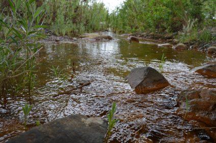Creek (5)