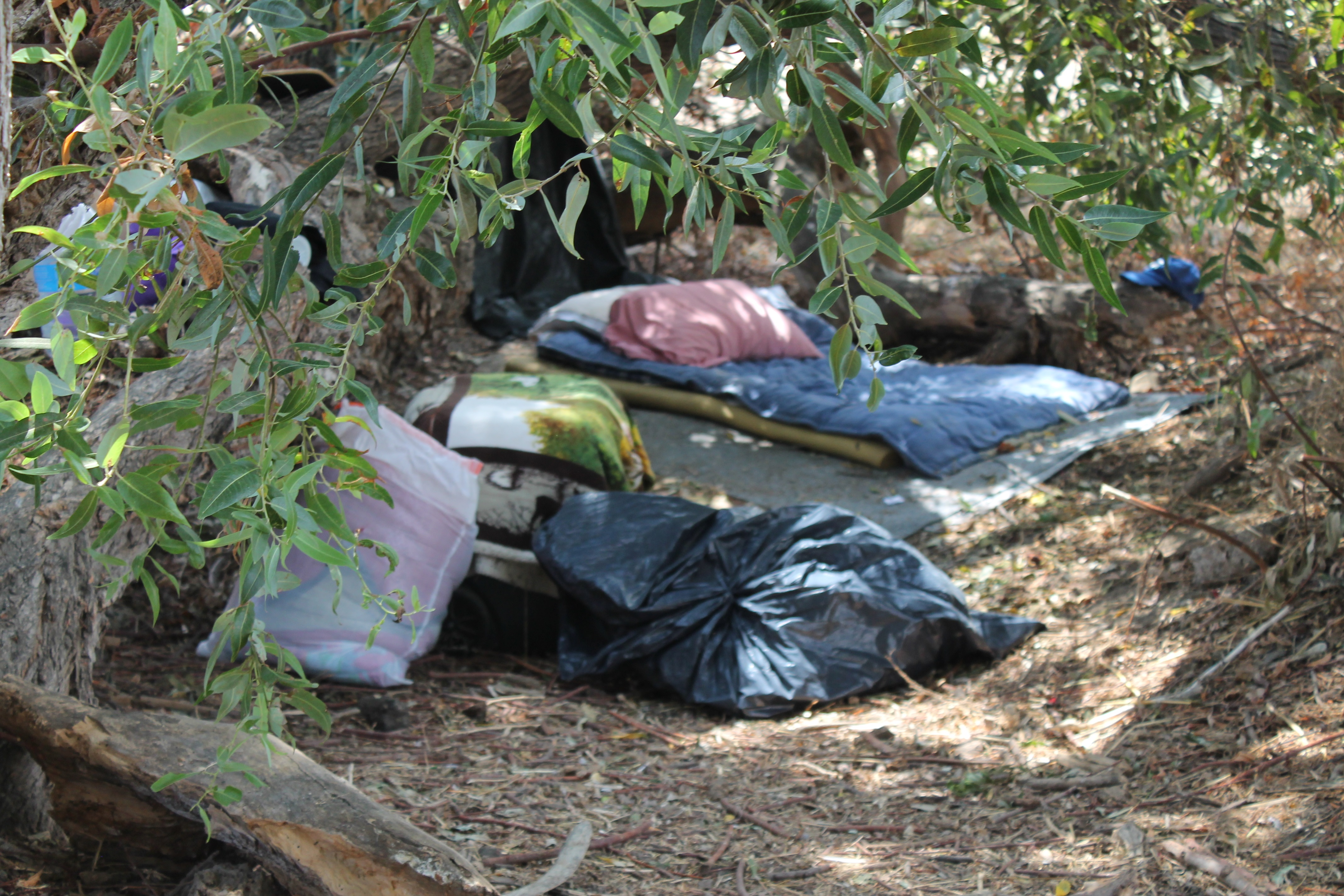 A person has set up camp in a lot adjacent to the Capistrano Valley Mobile Home Estates. Photo: Alex Groves