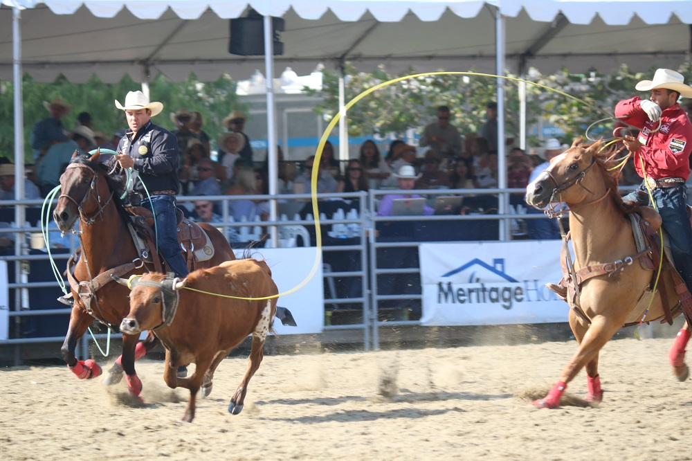 Audiences watch team roping at the Rancho Mission Viejo Rodeo on Saturday, Aug. 25. Photo: Alex Groves.