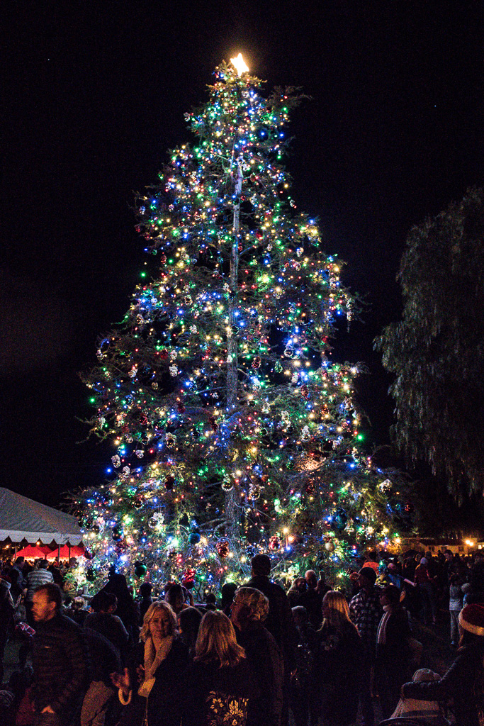 The city of San Juan Capistrano hosted a Christmas tree lighting and winter environment, as Mission San Juan Capistrano hosted its first tree lighting on its grounds on Saturday, Dec. 1. Photos: Scott Schmitt