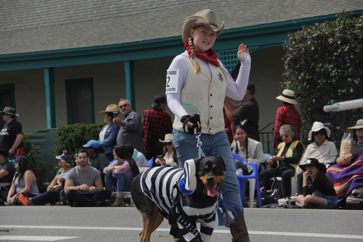 "As the 2019 winners of the Fiesta Association's annual Kids' Pet Parade, Emma Hall and her ""prisoner"" Rosie march in the Swallows Day Parade. Photo: Shawn Raymundo"