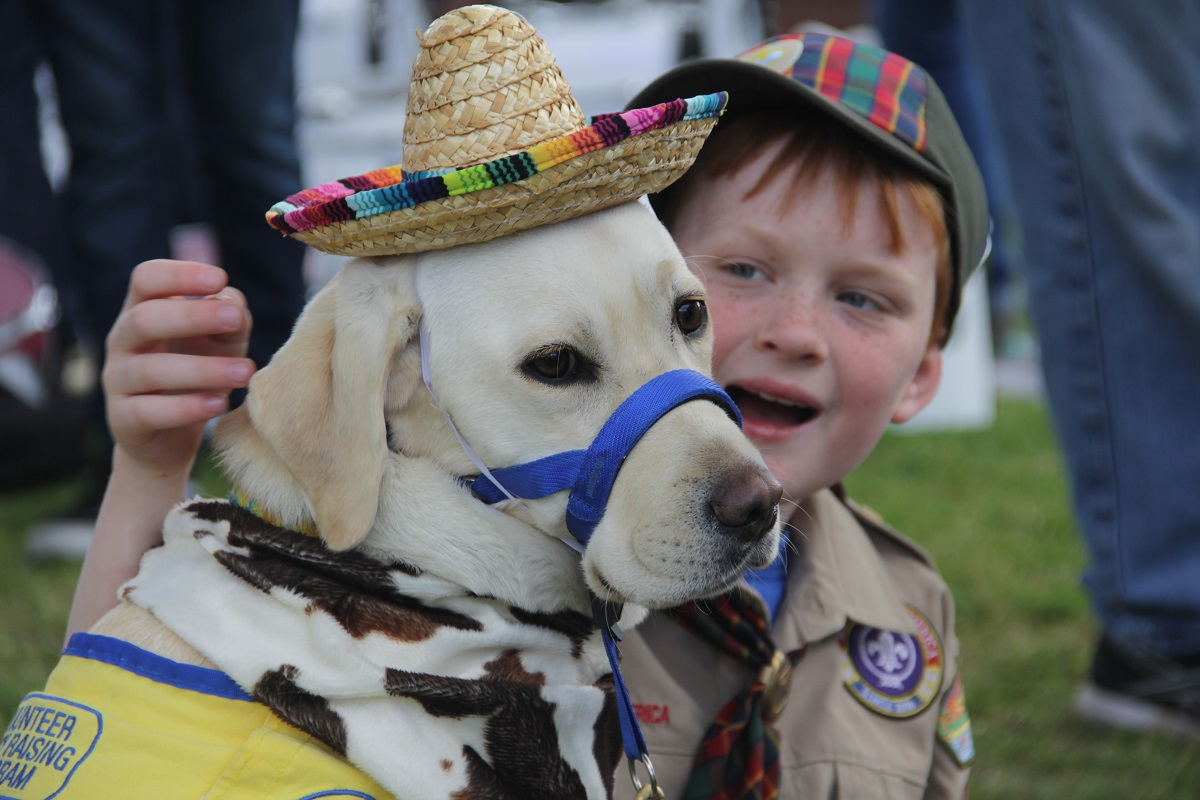 San Juan Capistrano Pack 12 Cub Scout Jeremiah Bond, 10, spends his downtime before the parade playing with Brooklyn from the Canine Companions for Independence. Photo: Shawn Raymundo