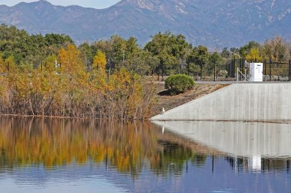An egret sits beside a Santa Margarita Water District retention basin that has created a wetland habitat at Coto de Caza. Inflatable dams similar to ones used to collect urban runoff in this project are being proposed in San Juan Capistrano. Photo: Fred Swegles