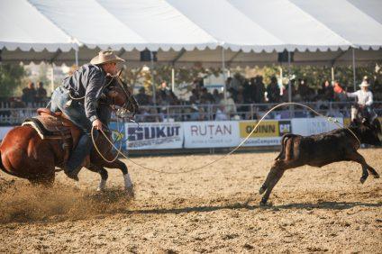 The 19th annual Rancho Mission Viejo Rodeo is scheduled for Aug. 24-25 at the Rancho Mission Viejo Riding Park. Photo: Allison Jarrell