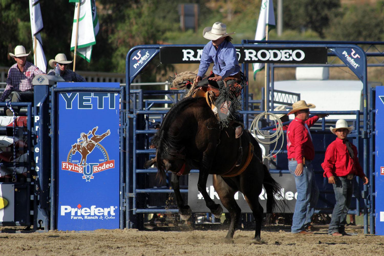 RMV Rodeo 2019